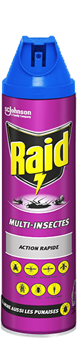 raid-aerosol-multi-insects